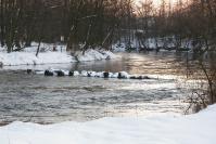 Rzeka Warta zimą_2