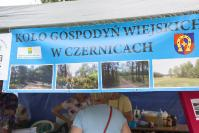 2016-06-19-dni-osjakowa-050
